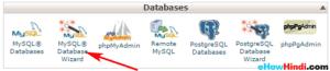 cPanel MySQL Database