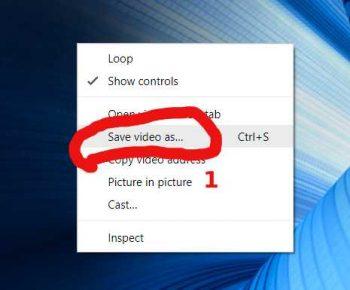 skillshare save video